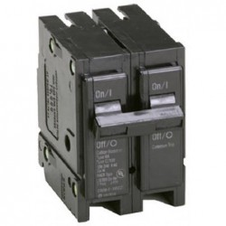 20A Double Pole Interchangeable Circuit Breaker